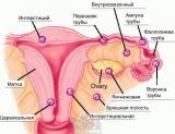 Внематочная беременность: признаки, симптомы, определение, тест, ХГЧ, сроки, операция